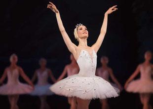 スタジオマーティスクール バレエを学ぶ