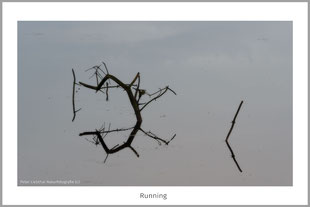 Abstrakte Naturbilder