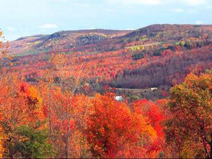 Fall in the Beaver Valley.