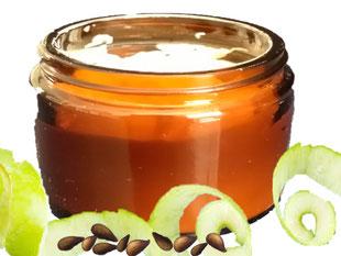 Apfel, Apfelcreme, Apfelkernöl