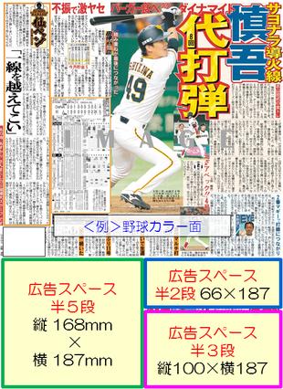 スポーツ報知西部本社版中面記事下広告イメージ