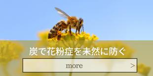 福島県会津喜多方の炭の家|建築(新築・リフォーム)福島県唯一の認可店|花粉も未然に防ぐ