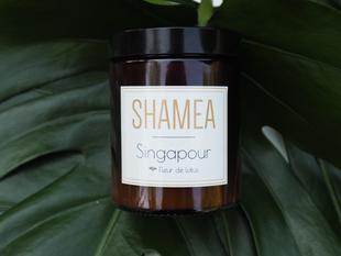 Méditer avec la bougie Singapour senteur fleur de lotus.