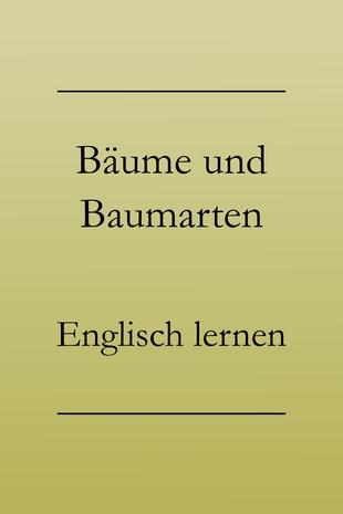 Englisch Vokabeln lernen: Bäume und Baumarten auf Englisch. Tanne, Buche, Fichte