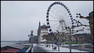 (D) Köln 24. - 25.01.2019