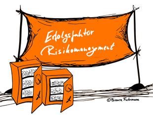 Projektmanagement – Blog, Risikomanagement, © Bianca Fuhrmann, Projekt-Voodoo®