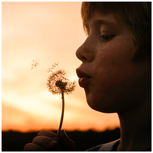 Fotografils - Ilse Wagemakers - Essen - fotograaf - portret - kinderfotograaf - familiefotograaf