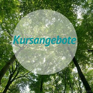 Qi Gong online Kurse und  Kursangebote zur Coronakrise in Mönchengladbach und Jüchen