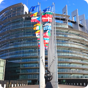 Tour privado del Parlamento Europeo de Estrasburgo en español