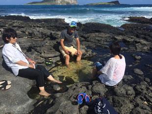 ハワイ オアフ島 ワイキキ 東海岸 マカプウヒーリングプール オプショナルツアー 専用車での貸切観光 チャーター 日本語タクシー