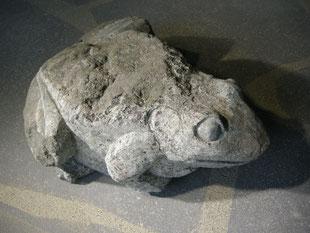 Frosch Bildhauer Paul Widmer