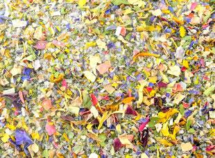Giordanos Blüten-Kräuter-Mix-Gewürzsalz