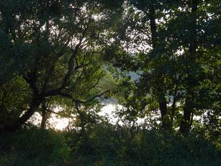 Озеро Сеньга, Творческая лаборатория НБ