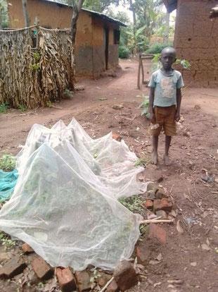 Etliche Kinder in den Dörfern legen eigene kleine Gärten an. Das Moskitonetz dient der Abwehr von Hühnern