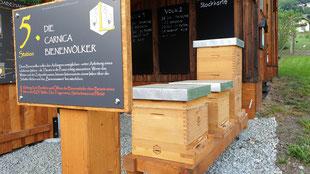 Maltataler Lehrbienenstand Station 5 die Carnica Bienenvölker Bienensummen live erleben