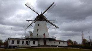 Gedanken kreisen wie die Räder der Mühle von Rammelhøj