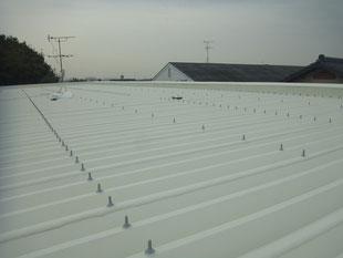 パラサーモシリコン遮熱塗装折板屋根 熊本T様家。