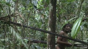 Los últimos kawahivas se ven obligados a vivir a la fuga, escapando de madereros armados y poderosos terratenientes. © FUN