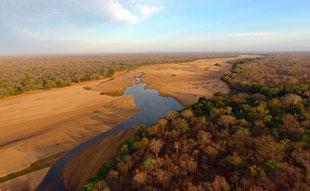 La Reserva Nacional Niassa en Mozambique, con estrictas políticas de conservación. / James Allen, Wildlife Conservation Society