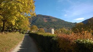 Atelier du Chateau en automne - Miscon
