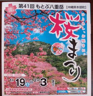 八重岳 桜まつり 案内パンフレット