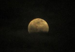 *空を見上げれば…ああ雲多し。皆既月食、最後まで楽しめるかな?