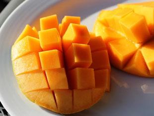 Mango-Igel