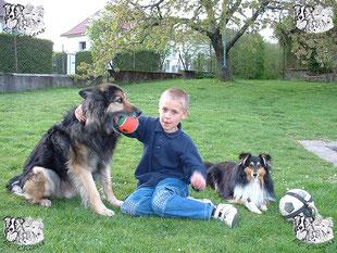 ec chiens enfant avec chien qui a suivi une education canine avec un dresseur canin