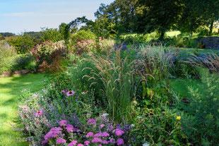 Bewerbungsfoto des insektenfreundlichen Gartens in Gassenhagen (dh)