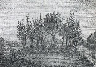 Upstalsboom, älteste bekannte Ansicht von C. B. Meyer (1790)