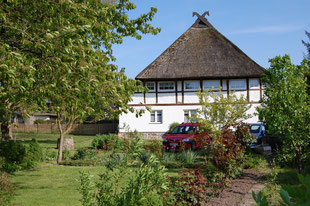 Unser 200 Jahre altes Reetdachhaus