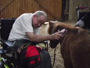 Jean-Michel aime prendre soin des poneys.