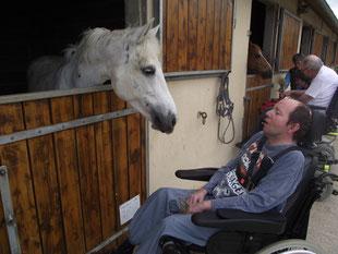 Antoine en relation avec Op la boum pendant une séance de thérapie avec le cheval.