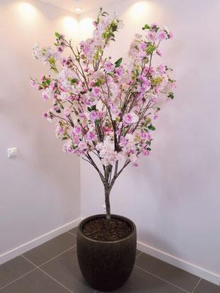 Foto van blossom tree