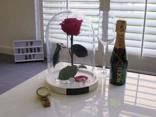 Foto van Long Life Rose Modern Collection - White