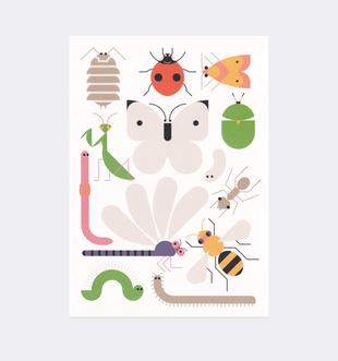 Postkarte Insekten für Kinder . Julia Matzke . Illustration . Bilder für Kinder