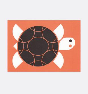 Postkarte Kinder Schildkröte . Julia Matzke . Illustration . Bilder für Kinder