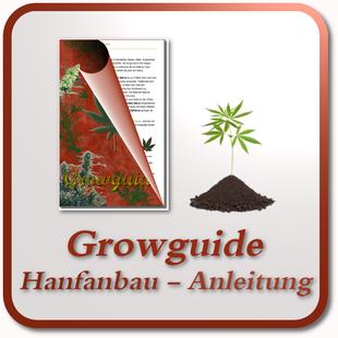 Growguide - Cannabis Anbau Anleitung