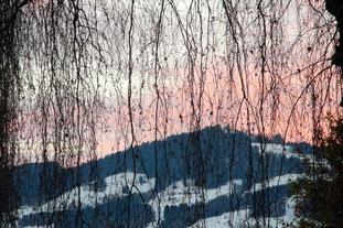 03. Januar 2013 - Das neue Jahr noch verhangen