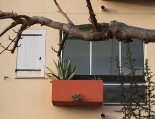 16. Januar  2014 - Natur setzt sich rurch