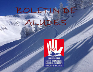 Clases esqui en aleman, Baqueira, Skilehrer Pyrenäen