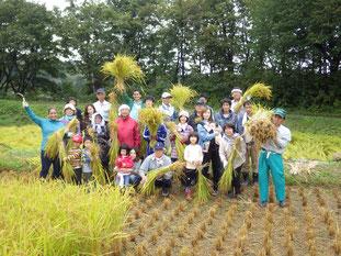 秋:恵みに感謝しながら稲刈りを行います