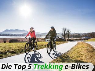 Die besten Trekking e-Bikes 2021