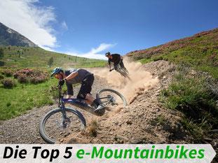 Die besten e-Mountainbikes 2021