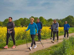 Gymnastik beim Nordic Walking in Viernheim