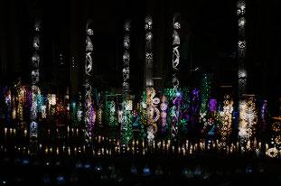 桜 竹灯り