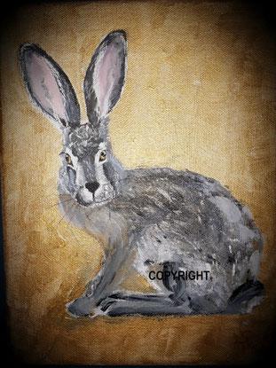 Hasenporträt eines grauen Feldhasen. Er ist sitzend von der SEite dargestellt und dreht seinen Kopf dem Betrachter zu.