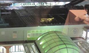JR福島駅前広場もイルミネーション