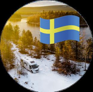 Flagge_Erfahrung_Wohnmobil_Schweden_Hund