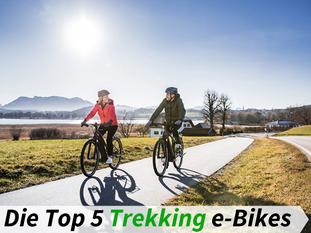 Die besten Trekking e-Bikes 2019